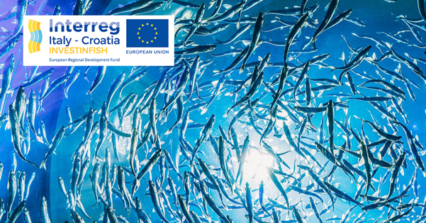OPPORTUNITY OF INNOVATION FOR APULIAN FISH COMPANIES