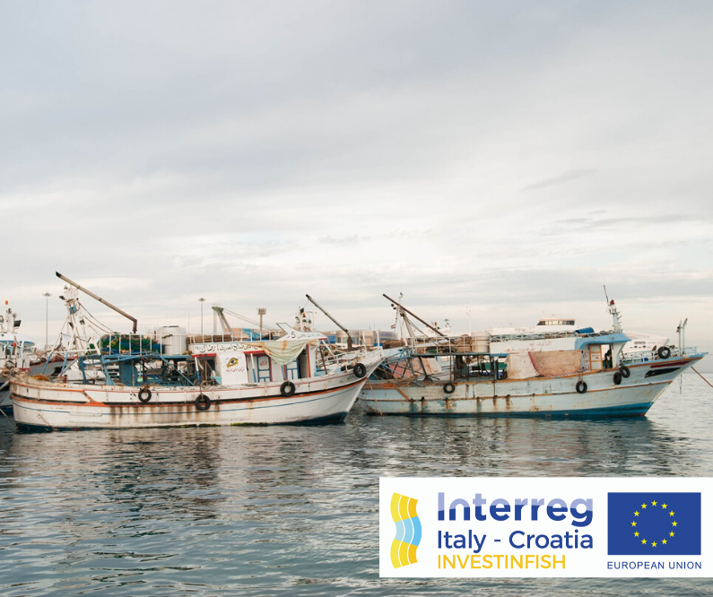 Punto Confindustria: Call for the selection of experts in innovation in the fisheries and aquaculture sectors for the Investinfish project