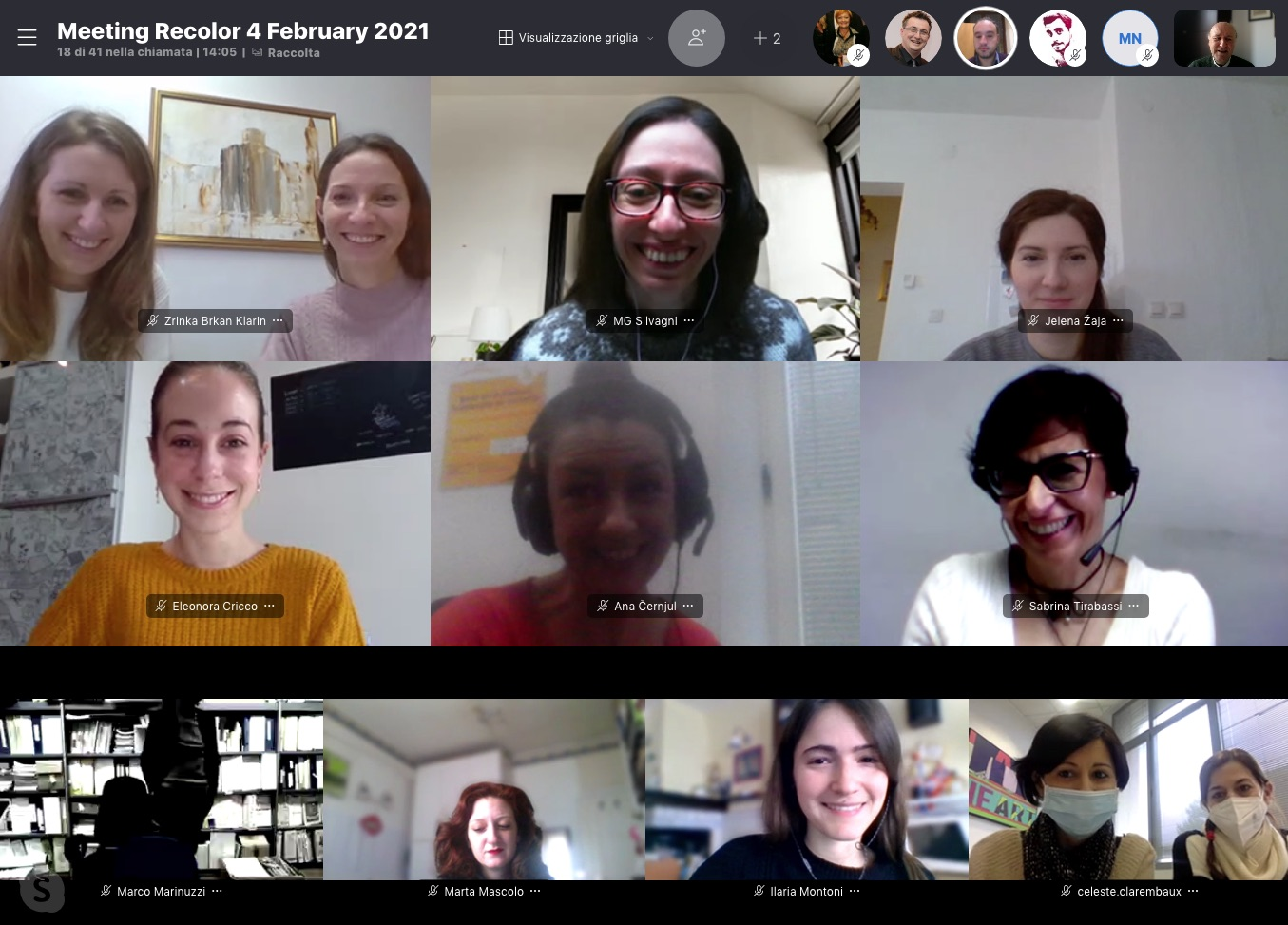 6th project meeting, online