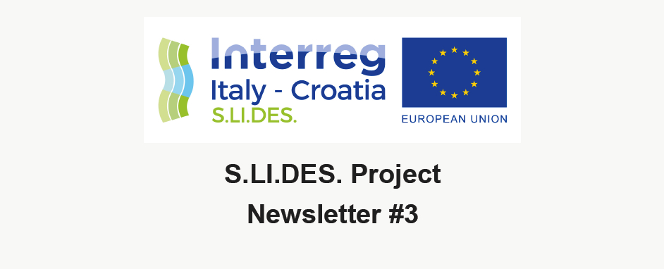 3rd Project Newsletter