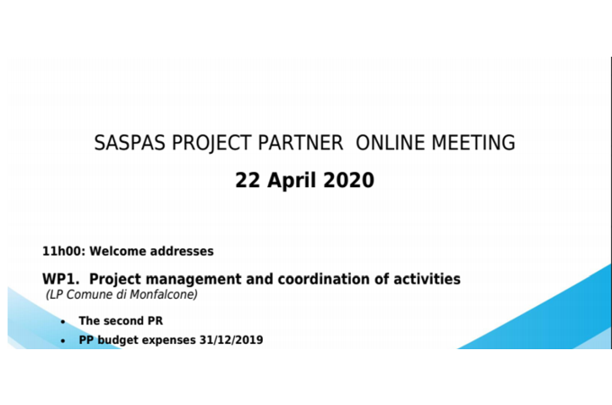 Project partner online meeting