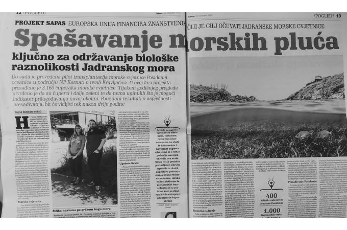 Read about SAPAS in local Croatian newspapers Novi list