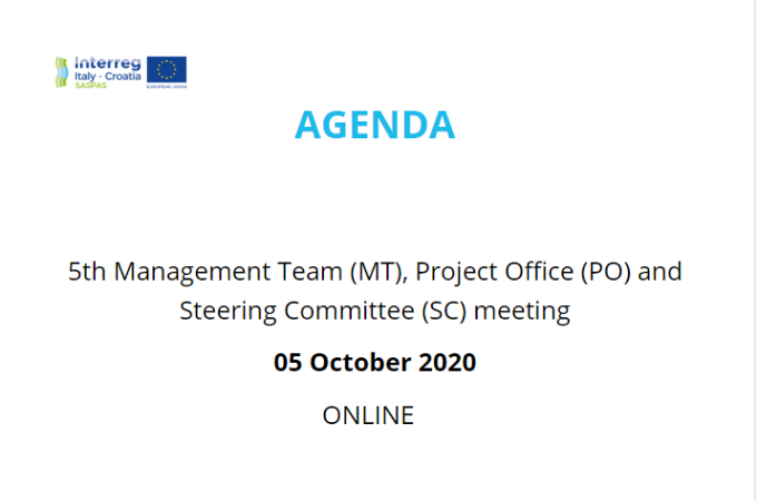 5th Managment Team (MT), Project Office (PO) and Steering Committee (SC) online meeting